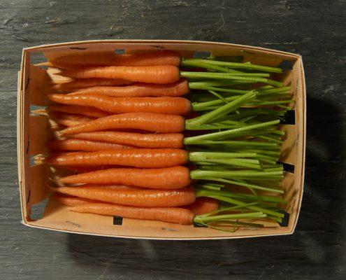 Barquette de mini-carottes oranges - LE JARDIN DES ROYS