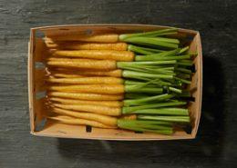 Barquette de carottes jaunes - LE JARDIN DES ROYS