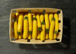 Courgettes jaunes - LE JARDIN DES ROYS