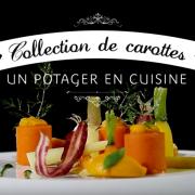 Collection de carottes verveine citronelle