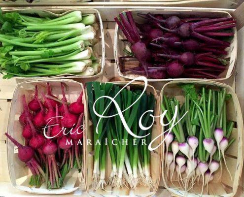 Mini légumes en barquette de Eric ROY maraîcher