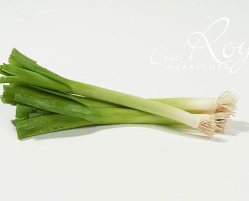 Mini-poireau - Eric Roy maraîcher